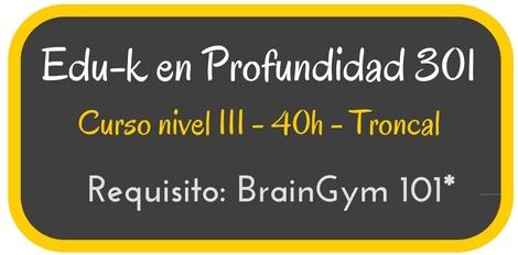 Curso Kinesiología Educativa en Profunidad