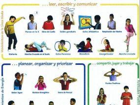 Movimientos de Brain Gym